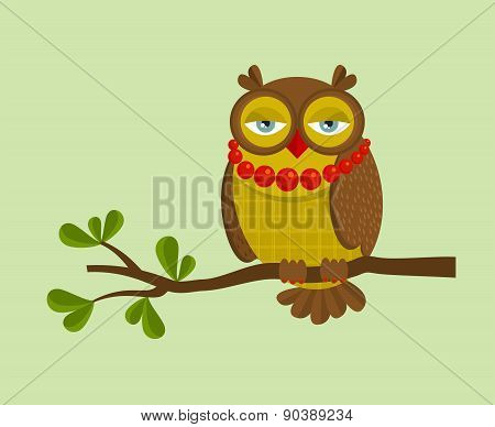The portrait of fashionable owl on the branch.