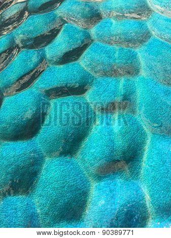 Turquoise Ceramic Pot with Circular Pattern Inlay