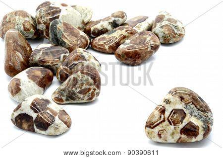 Limestone Garnet