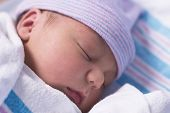 stock photo of newborn baby  - newborn baby boy in hospital nursery resting peacefully - JPG