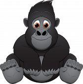 foto of gorilla  - Vector illustration - JPG