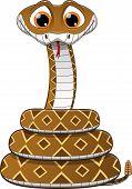 foto of anaconda  - illustration of a rattlesnake on a white background - JPG