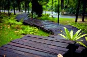 stock photo of wet feet  - wet hiking trail in tropical city park - JPG
