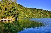 image of greenery  - Calm waters with reflections amongst lush greenery Plitvice Lakes National Park Croatia - JPG