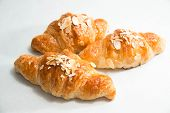 foto of croissant  - Fresh almond croissant on a white background - JPG