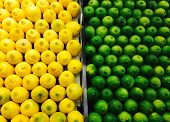 stock photo of stall  - Yellow fresh lemons and green limes in a stall - JPG