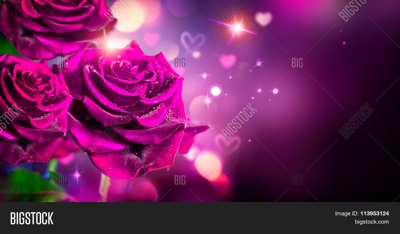 Valentine Or Wedding Card Design. Beautiful Violet Roses Bouquet Over
