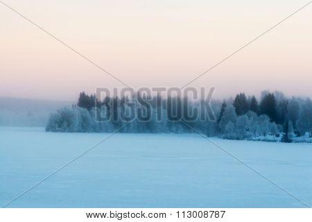 Beautiful Scandinavian Foggy Winter Scene.