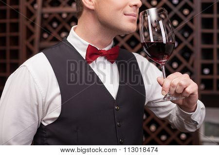Skillful winehouse worker is examining elegant beverage