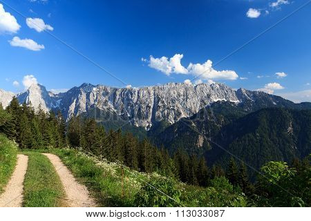 Path in the foreground and Wilder Kaiser mountains in the background