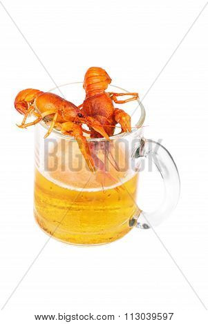 Two Boiled Red Lcancer Is Lying On The Glasses Of Fresh Beer