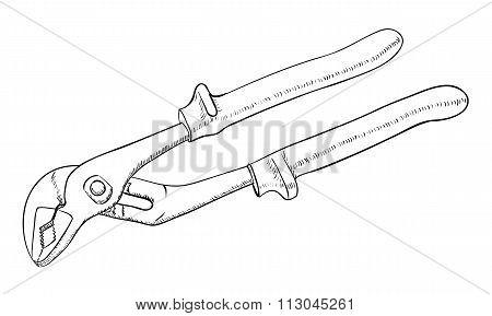 Parrot Pliers illustration