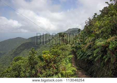 Mountains on Caribbean island of Dominica