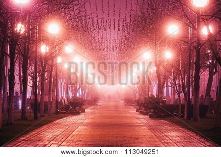 Beautiful avenue street in city at night in morning fog