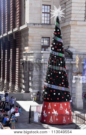 Festive Christmas Tree in Perth