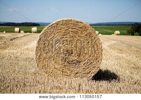 hay roll field