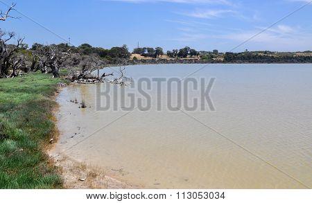 Lake Coogee Landscape