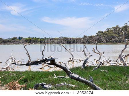 Lake Coogee: Western Australia