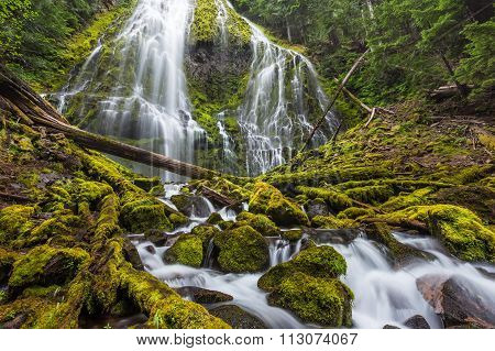 Proxy Falls Trail In Oregon National Forest