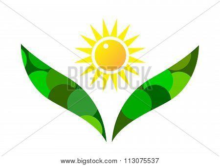 logo flower .