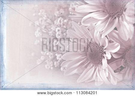 soft pink daisy bouquet