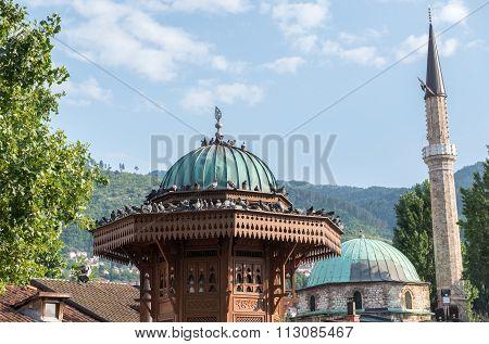 Fountain In Sarajevo