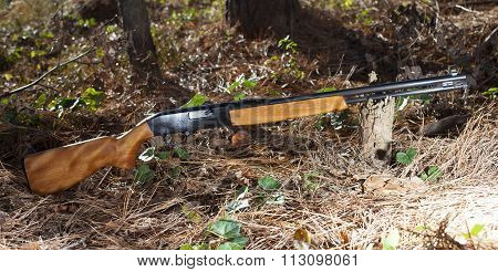 Weapon In The Forest