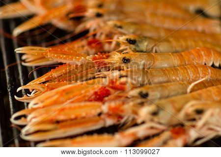 Orange Prawns Grilled
