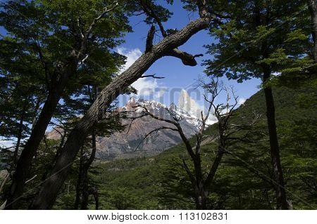 Peak Of Mt Fitzroy, Patagonia