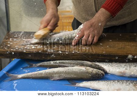 A Fisherman Removing The Fish Scales