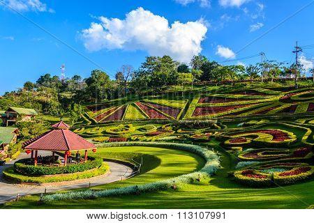 Lanscape Of Garden Park At Doi Mae Salong