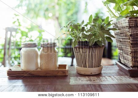 Sugar In Glass Jar With Small Tree In The Pot Plant Decorated Cafe Shop