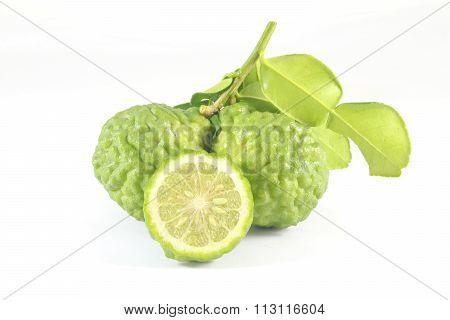 Kaffir Lime Citrus Hystrix Exotic