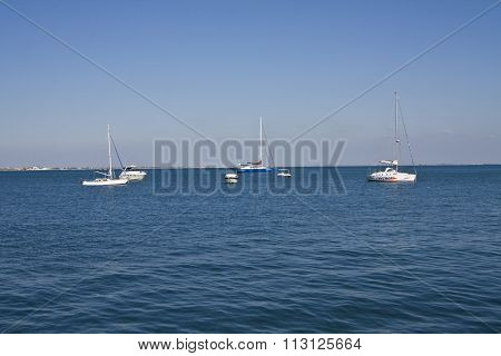 Yachts In Sea