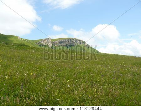 Landscape. The blossoming meadows on slopes of hills.