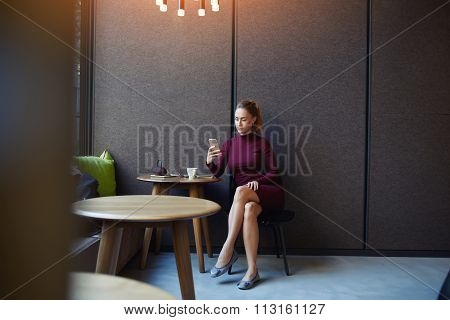 Female dressed in elegant dress reading news via network on cell telephone while sitting in cafe