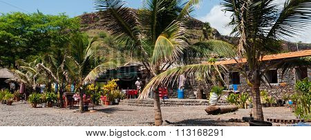 Palm trees on stone promenade at coast of cape verde island