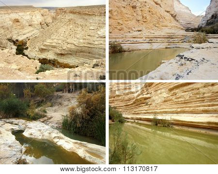 Canyon En Avedat and  oasis of the Negev Desert in Israel
