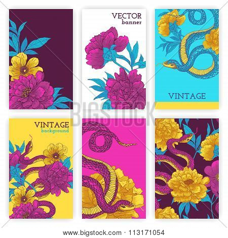 Set of brochures with snakes and flowers.