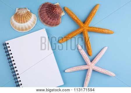 white notebook on the blue background with starfish and sea shell