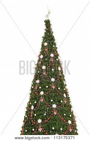 Fur Tree Decorated With Lights Isolated