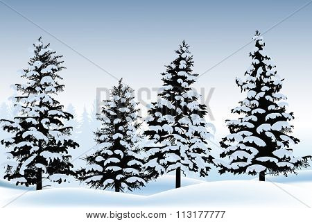illustration with fir silhouettes in snow on blue background