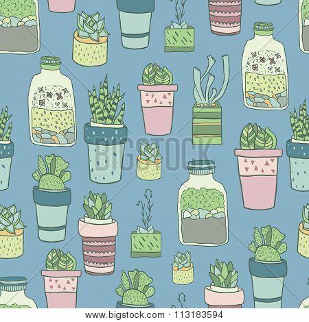 aloe, art, background, blossom, botanical, botany, cacti, cactus, cartoon, collection, cute, decorat