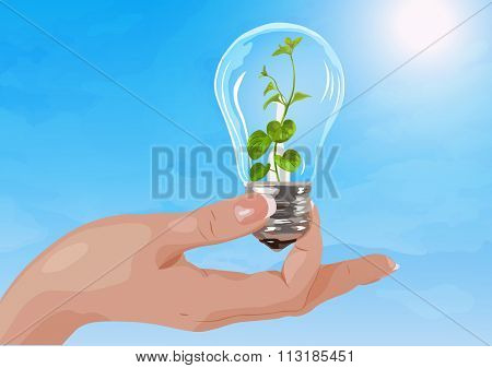 Young woman hand holding light bulb with plant on sky background