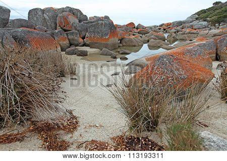 Beach At Binalong Bay, Tasmania