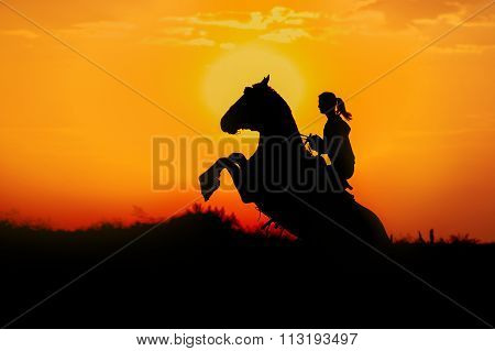 A girl riding a horse performs a trick on a background of dawn.