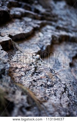 Sedimentary Rocks Background