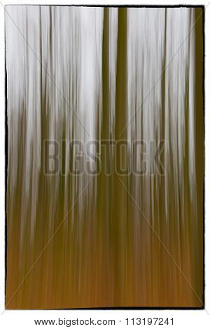A Slow Shutter Speed Coloured Photo Of Trees In A Forest Showing Green And Orange Leaves  With A Vin