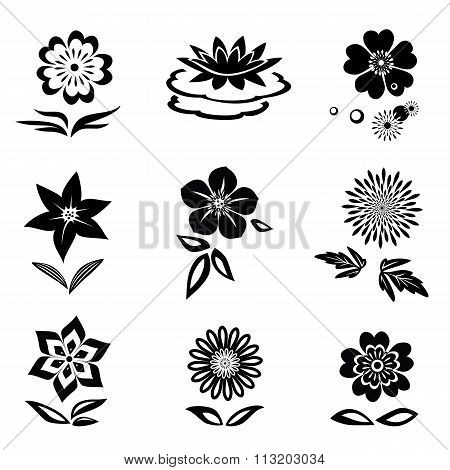 Flower set. Chamomile, lily, orchid, water-lily. Black silhouettes on white background.  Isolated sy