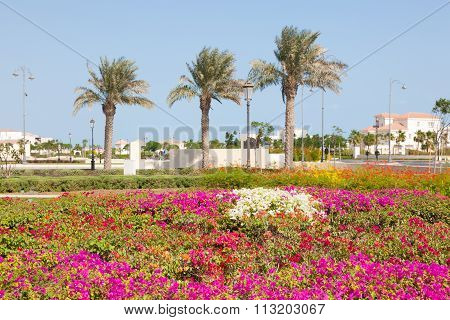 Flowers At The Pearl In Doha, Qatar